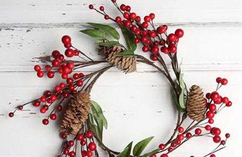 Plantas de Navidad: descubre sus curiosidades y cuidados
