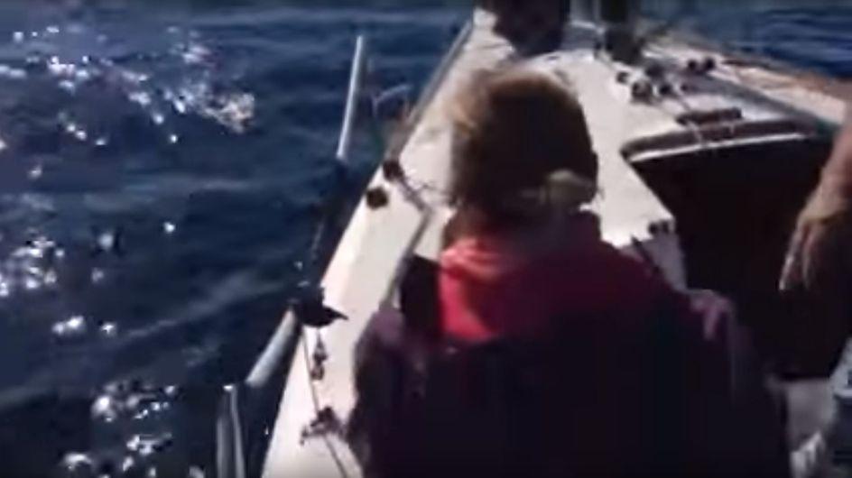 Ihr werdet nicht glauben, was diese Segler hier mitten auf dem Meer aus dem Wasser ziehen