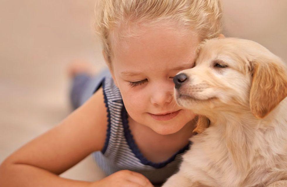 Los niños que viven con perros tienen menos posibilidades de padecer asma