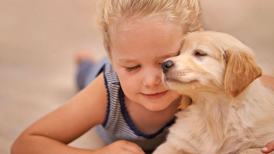 Forscher bestätigen: Kinder, die mit Hunden aufwachsen, leben gesünder