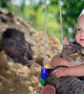 20 foto che provano che vostro figlio deve ASSOLUTAMENTE avere un gattino