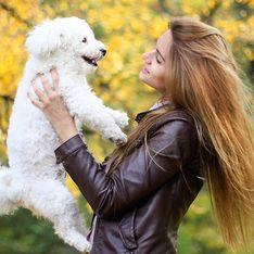 13 provas de que é melhor ter um cachorro do que um namorado