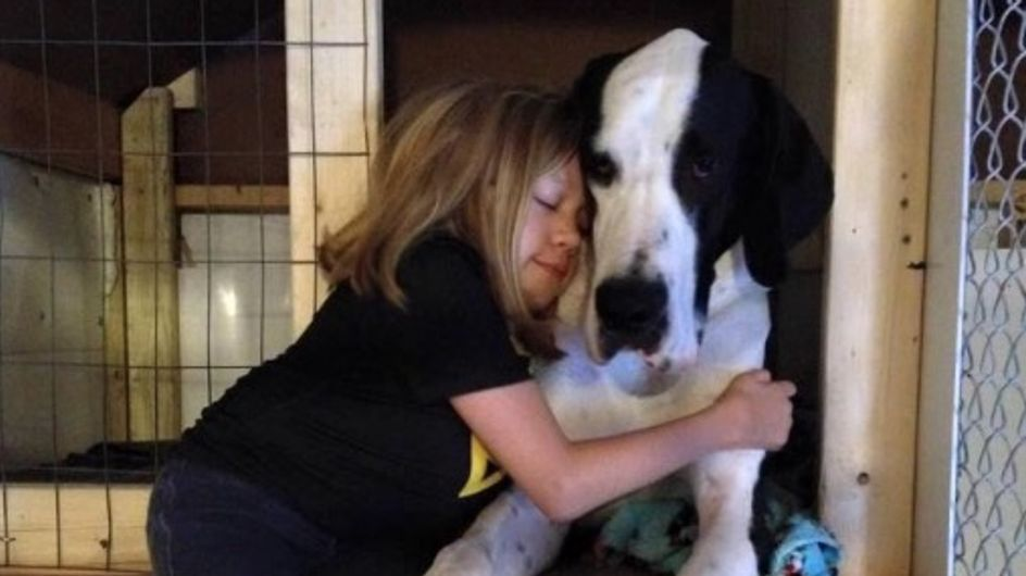 Handicapée, une fillette de 11 ans marche grâce à son chien (Photos)