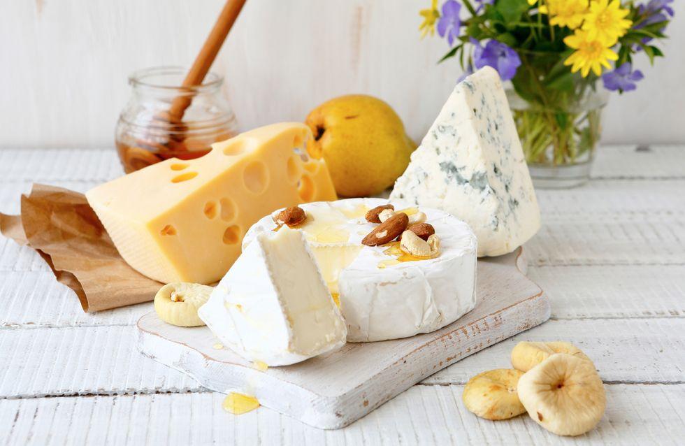 Dall'antipasto al dolce: ricette per gli amanti del formaggio