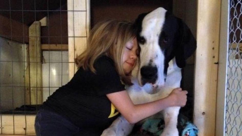 Bimba disabile ricomincia a camminare grazie all'aiuto del proprio cane
