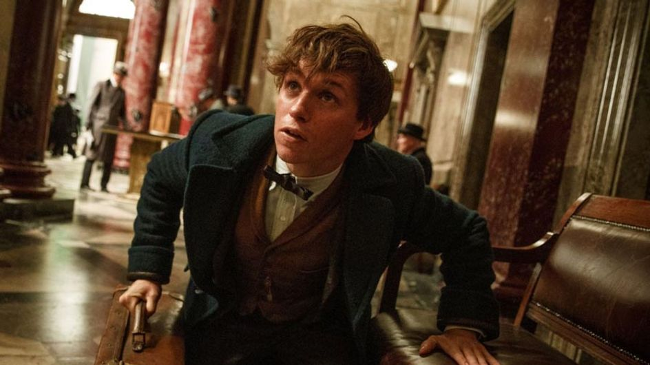 Brand New Pictures From Fantastic Beast And Where To Find Them Are Here!