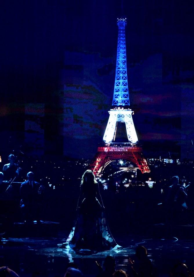 Céline Dion sur la scène des American Music Awards 2015