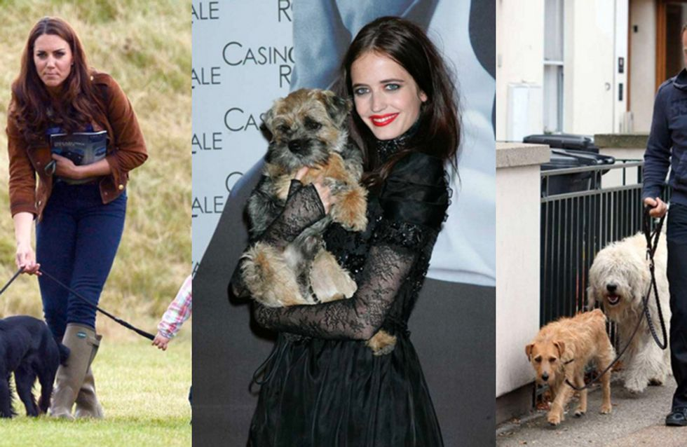 42 Celebrities And Their Adorable Pooches, Just Because