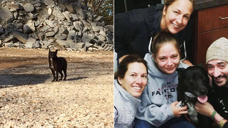 Zwei Jahre war ihr Hund verschwunden: Das tränenreiche Wiedersehen ist wunderschön