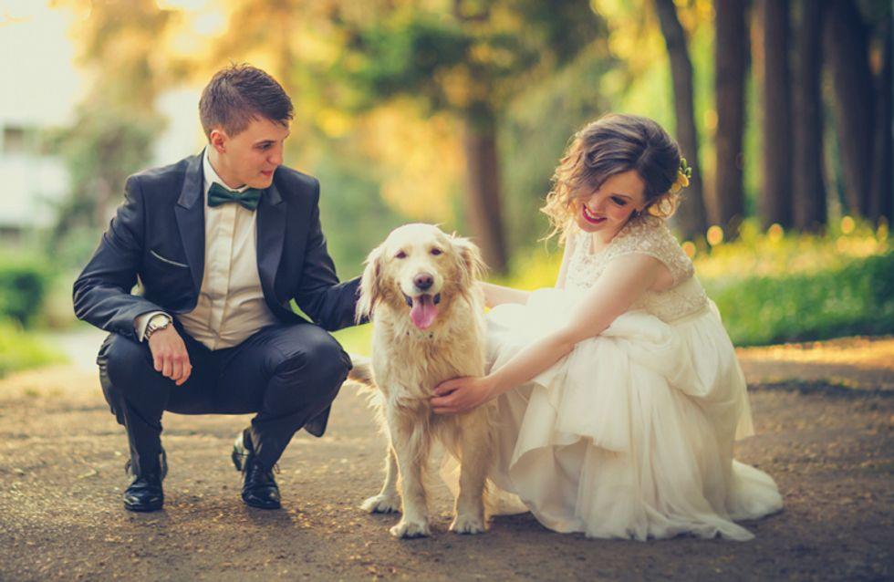 ¿Dejarías que tu perro grabara el vídeo de tu boda?