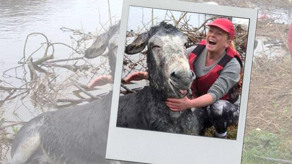 Sie rettet sein Leben in letzter Sekunde - und am Ende hat dieser Esel gut lachen