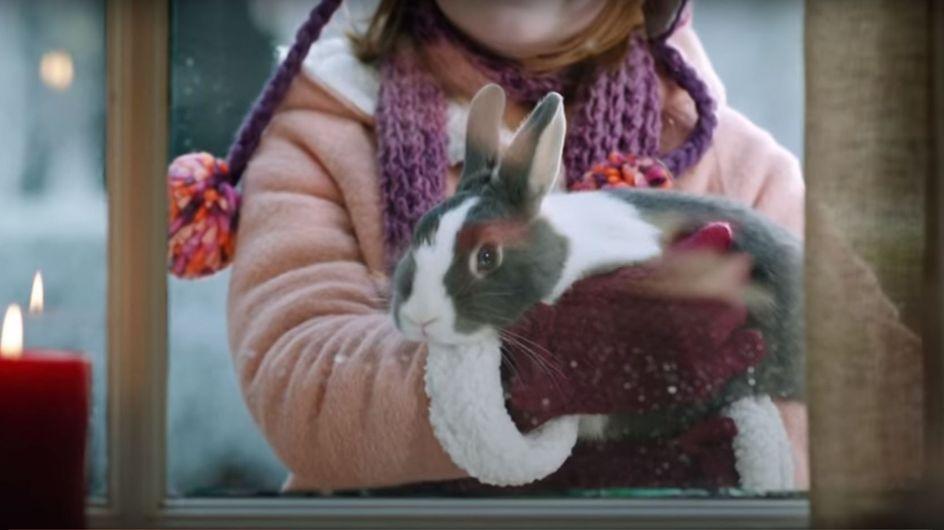 Pünktlich zum Weihnachtsessen holt Papa diesen Hasen ins Haus - doch dann kommt alles anders