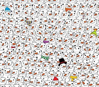 Trova il panda: la foto che sta facendo impazzire il web