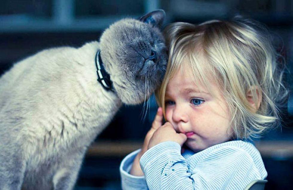 20 imágenes que demuestran que los niños necesitan una mascota