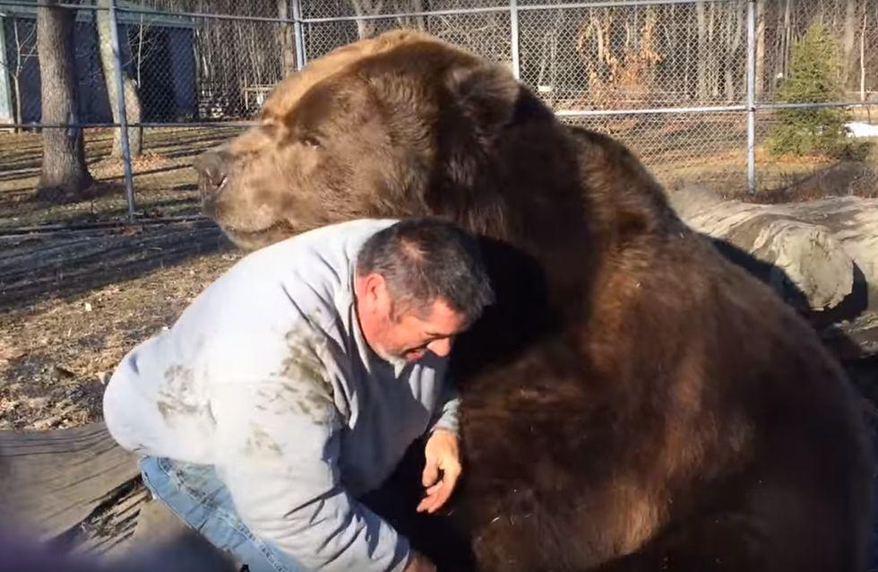 L'orso che vuole le coccole