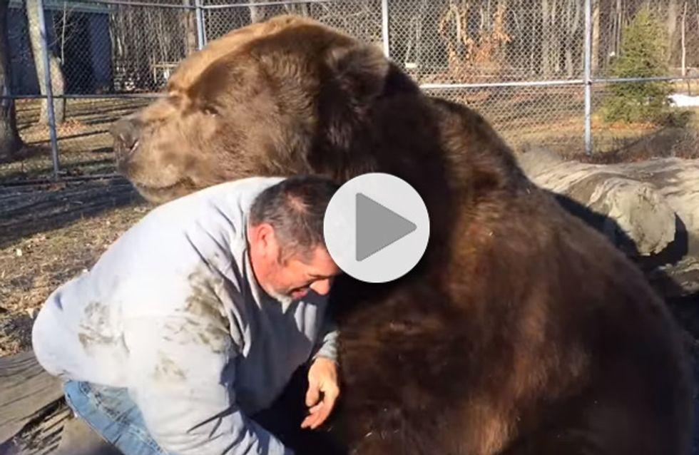 L'émouvante vidéo du câlin entre un homme et un ours