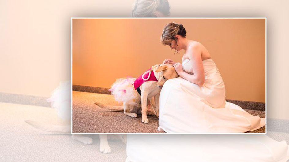 Dieses Foto einer Braut mit ihrem Begleithund geht einfach ans Herz