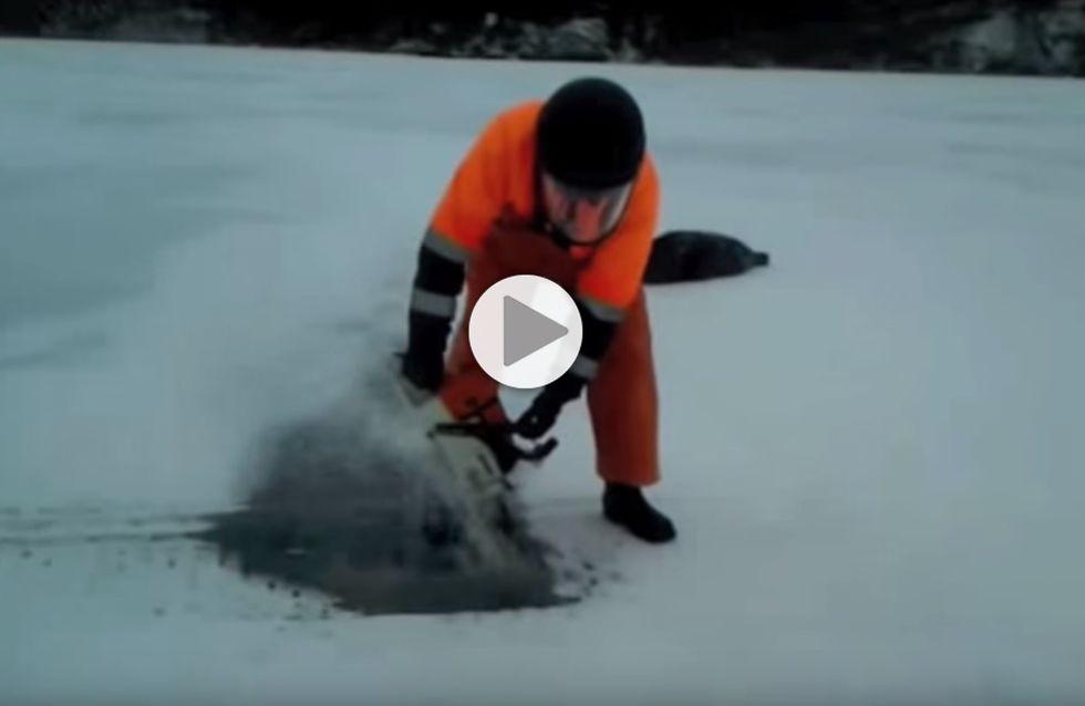 Cet homme sauve la vie d'un phoque bloqué par la glace