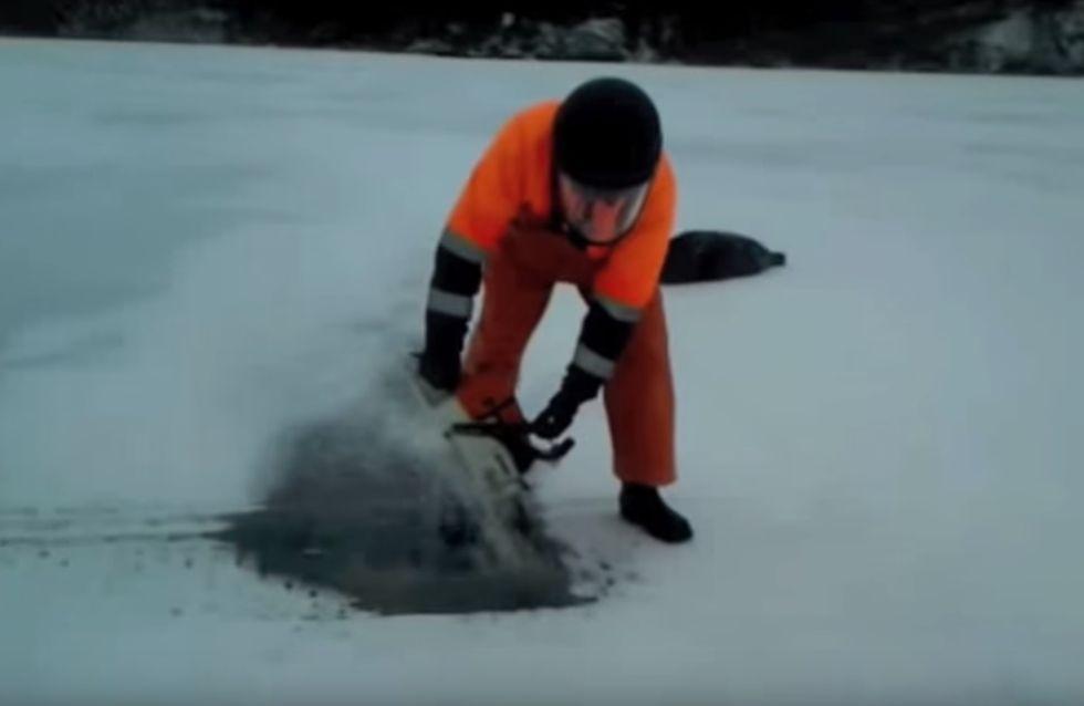 Robbe, la foca salvata dal buon cuore di quest'uomo
