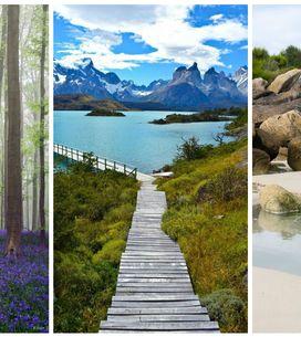 10 photos qui vont vous donner envie de vous mettre au vert
