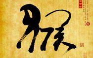 Oroscopo Cinese 2016: l'anno della Scimmia