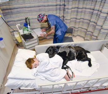 Il legame tra questo bimbo autistico e il suo cane è così forte che vi farà scio