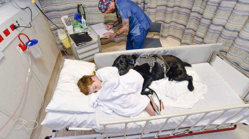 Il legame tra questo bimbo autistico e il suo cane è così forte che vi farà sciogliere il cuore