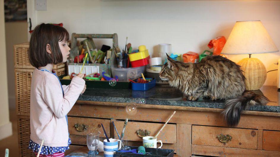 Iris Grace, la niña de 6 años con autismo que hace obras de arte