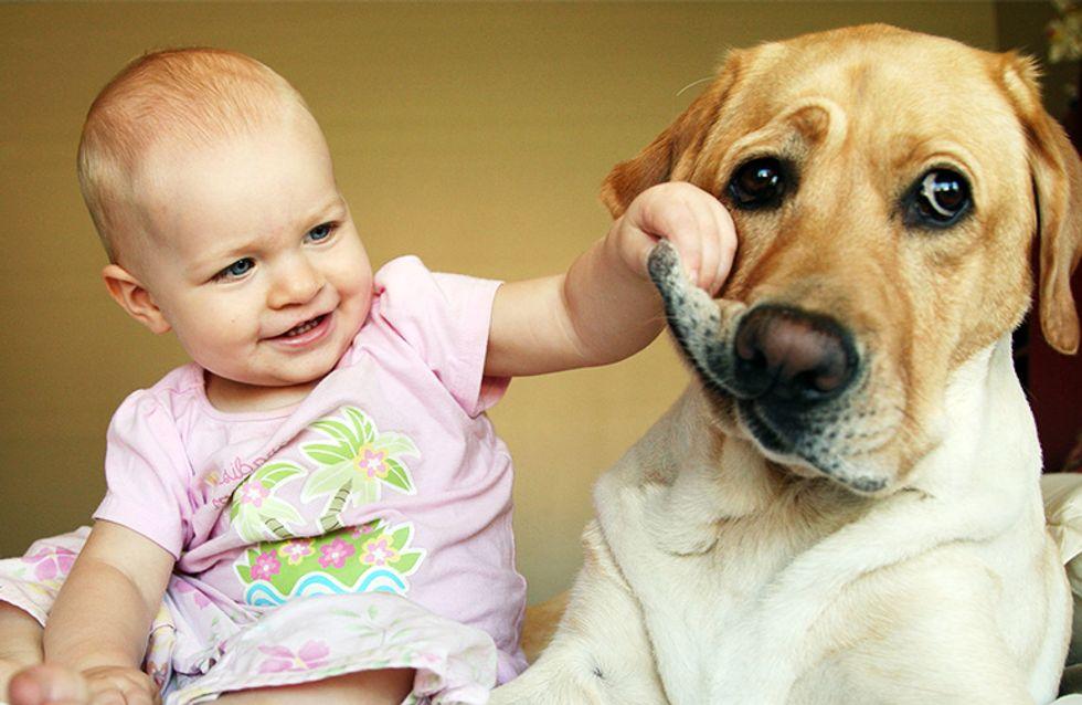 25 imágenes que prueban que niños y mascotas están hechos los unos para los otros