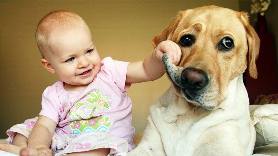 25 foto che provano che bimbi e animali sono fatti per stare insieme