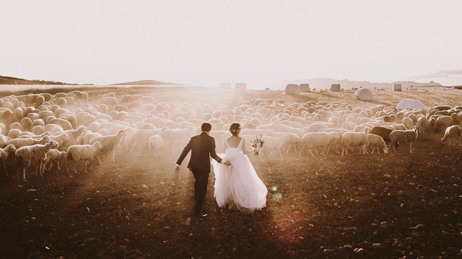 Fotógrafos de boda: tu historia de amor a golpe clic