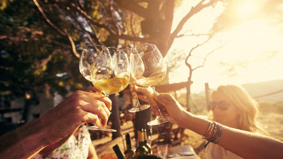 Estos son nuestros vinos favoritos y te contamos por qué