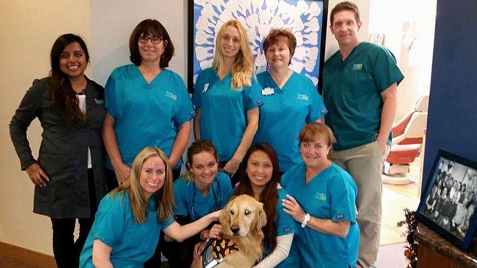 Hier gehen kleine Patienten gern zum Zahnarzt - dank DIESER tierischen Unterstützung!