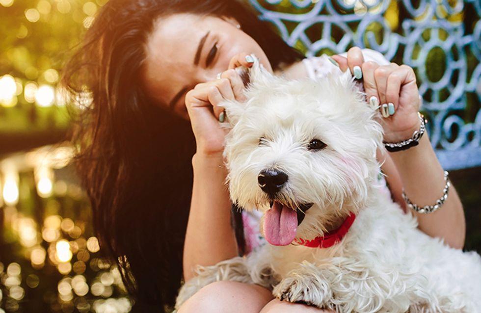 """Por que você deveria ser """"mais parecida"""" com o seu cachorro"""