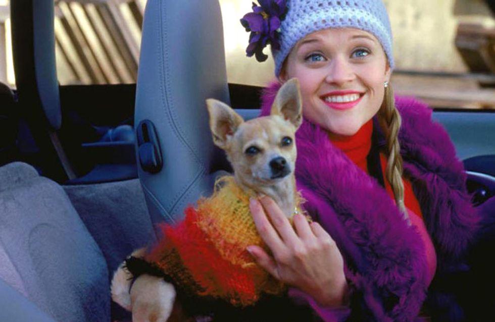 Les filles qui ont un chien sont EXTRAORDINAIRES, la preuve