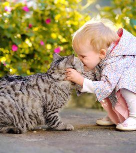 Top 8 des cadeaux les plus cools pour les enfants fous d'animaux
