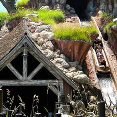 Pedido de casamento na Splash Mountain prova que sonhos se tornam realidade na Disney