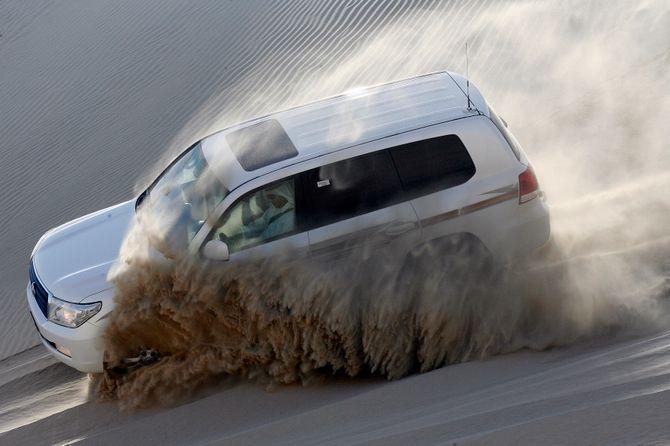 Un safari dans le désert