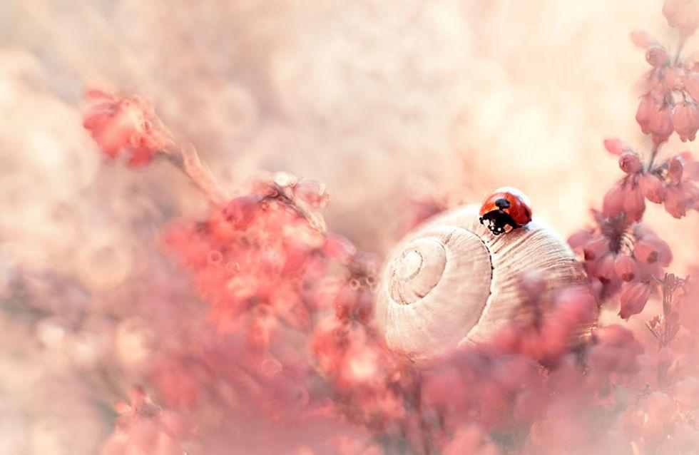 Esta fotógrafa crea universos de fantasía en donde nos gustaría vivir
