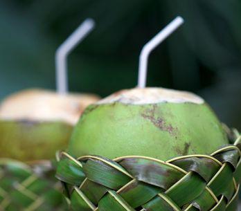 On fonce sur le coco, l'aliment qui a tout bon !