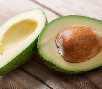Avocado: proprietà, calorie e benefici di una pianta speciale