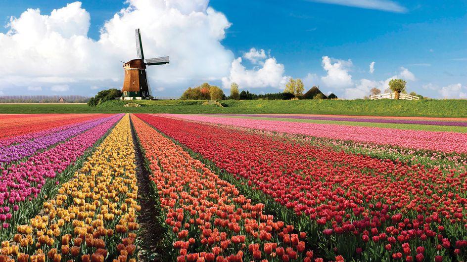 Despedida de soltera en Amsterdam: tres días de diversión asegurada