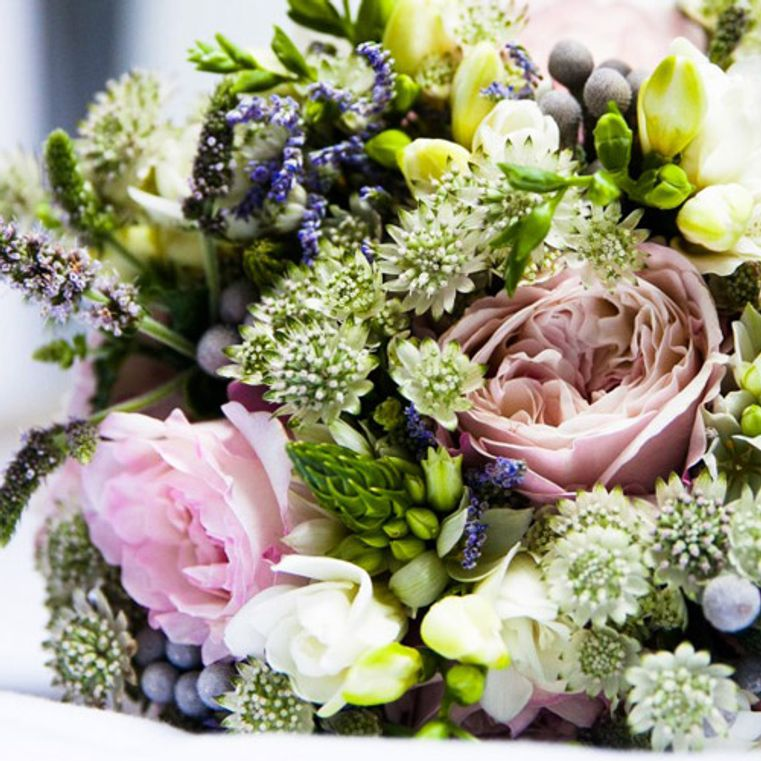 flores de bach para adelgazar foro tv