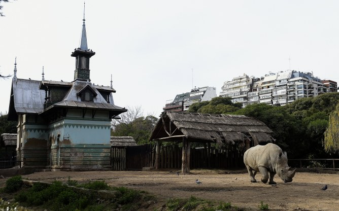Le zoo de Buenos Aires
