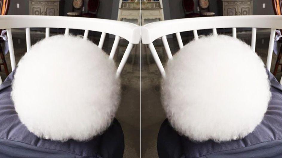 Es sieht aus wie ein riesengroßer Wattebausch - aber könnt ihr erkennen, was es wirklich ist?
