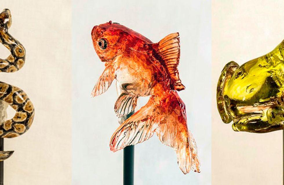 Pra ver ou pra comer? Artista faz pirulitos em formato de animais e os detalhes são impressionantes
