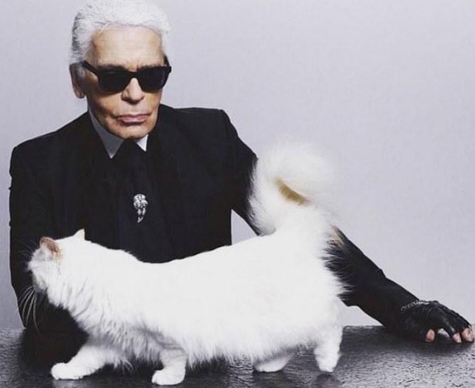 Karl Lagerfeld y Choupette Lagerfeld