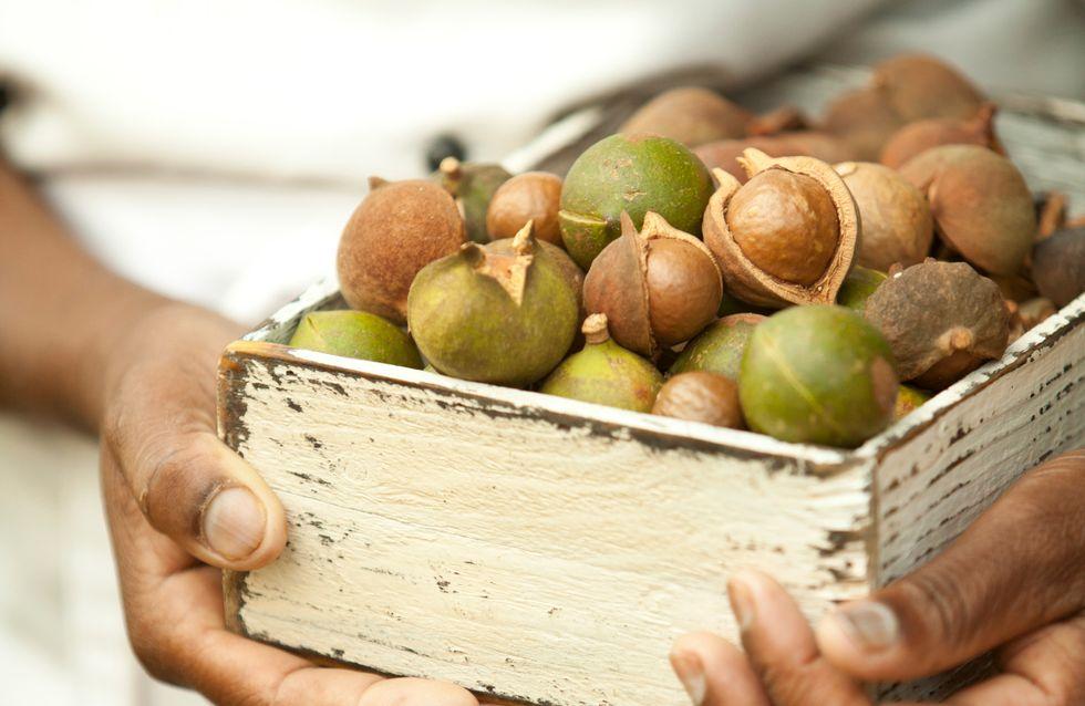 Le macadamia, parfait dans nos desserts mais aussi sur notre peau