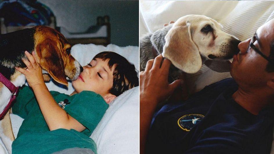 Der schwere Abschied vom besten Freund: So bewegend sagen Haustierbesitzer Lebewohl