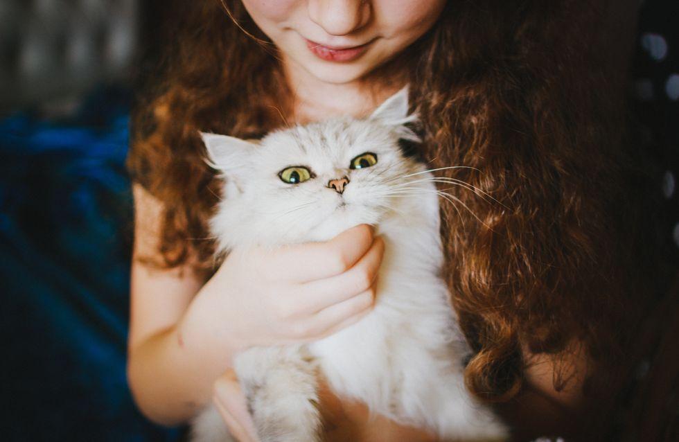 Miau? Genau! 9 Gründe, warum Katzenbesitzerinnen einfach umwerfende Frauen sind!